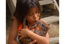 Amazon people and communities / Candid shots of people in native and campesino villages in the Peruvian Amazon