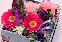 dobozos virág