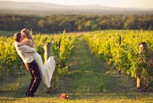 Wedding photo - vineyard