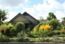 The Farm : Urban Homestead
