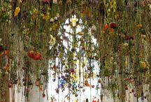 Rebecca Louise Law / Flowers - Temporary installation - Ephemeral installation