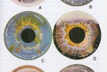 bjd eyes
