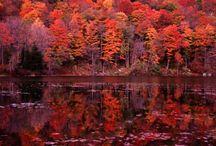 East Coast/Fall