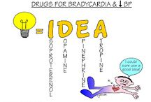 Paramedic Medications / by Cassie