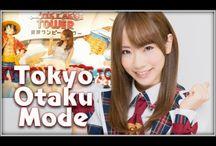 東京ワンピースタワー / 堀内華央理(バクステ外神田一丁目) 海外へ向けた日本の名所(東京ワンピースタワー)紹介します