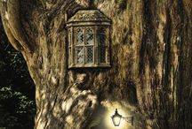 Fairy house images