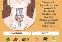 Saúde - tiroides