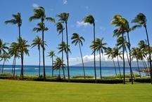 Kapalua, Maui / My favorite Kapalua, Maui scenes!