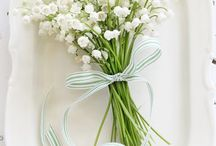 Muguet & Lily of the valley