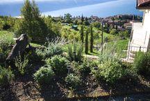 B&B Borgo le vigne resort / Vacanze sul Lago di Garda Tignale