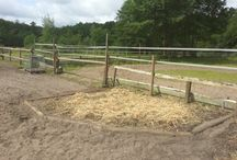 Paddock Tracks for Horses