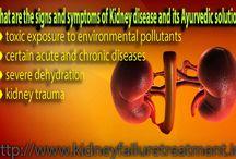 Is Ayurvedic medicine helpful for kidney patient?