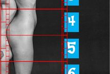 Proporcje ciała.