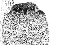 secret life of an owls. совы / artworks. dmitry geller. pictures for sale. 21x29. chinese ink. paper. рисунки дмитрия геллера. работы продаются.