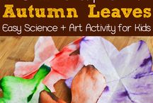 Classroom science/nature