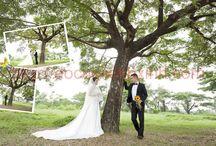 Album hình cưới quán cafe (Phước Hạnh – Thanh An) / Album hình cưới quán cafe (Phước Hạnh – Thanh An) được chụp bởi các nhiếp ảnh gia chuyên nghiệp tại http://aocuoixinhxinh.com/ với trên 10 năm kinh nghiệm