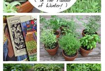 Preparing Your Garden for Spring / Keep your gardening efforts on track for spring with these helpful tips!