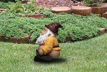 Potty Central Garden