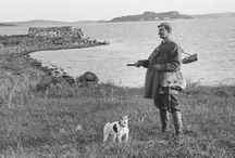 Hunting with Terriers