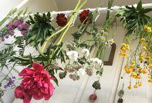Omat kukat ja kranssit / Flower arrangement, kranssi, kranser