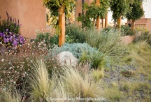 Client: Meaney Residence / Landscape Coach with Brown, green & more