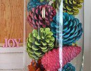 fenyőtoboz - pine-cone