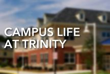 Campus Life / Trinity Christian School seeks to impart truth, cultivate character, and encourage service in its community. To learn more about how Trinity fosters this growth in students, teachers and parents outside of the classroom, browse the pins below or visit the school's website.