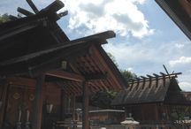 Autumn / 龍神総宮社の秋の境内の風景です。