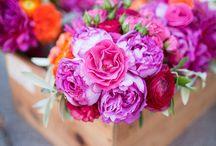 Flowers / by Jenny Chen