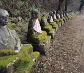 Buddhism, Mindfulness, Peace / by Rachel Roth