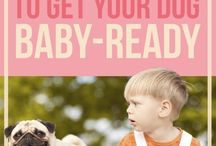 Preparing for New Baby: Pets and Kids