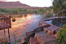 New Mexico / by Michelle Falabella