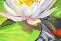 Seerose white gemalt