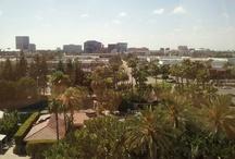 Beautiful Irvine California