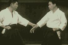 aikido teknik