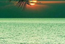 Beaches / Rinos