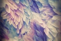 ⋆❋ Close Up!!