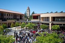 Photos / Stanford Graduate School of Business, GSB Library, Stanford University, SF Bay / by Stanford GSB Library