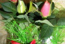 Du pink et du rose