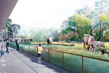 Zoo de Maubeuge / L'actualité en images sur le Zoo de Maubeuge (France)