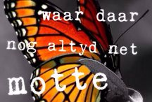 My hart in Afrikaans / Afrikaans quotes