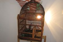 Other Antiques & Collectibles / Other Antiques & Collectibles