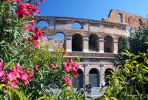 Weekend w Rzymie (mp) / Koneserom sztuki i okazałych zabytków, lubiącym niespieszne spacery, szukającym ochłody w cieniu licznych fontann, miłośnikom poranków pachnących kawą, entuzjastom włoskiego dolce vita, szyku i elegancji.