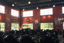 Aluminum Glass Garage Doors for your Showroom / This is how to show your Motor Harley-Davidson Cycles with Overhead Door Company of The Meadow & NYC.