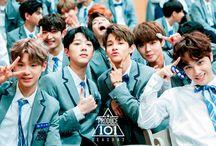 101 boys