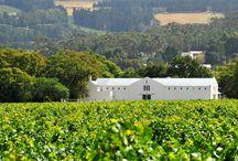 La Bri Winery a French Legacy