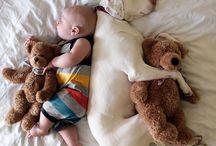 Cuteness / Dogs are so cute!!!!!