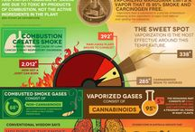 Cannabis Infographics / Cannabis Facts