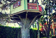 Treehouses / Treehouses / by Cindy Girroir