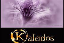Kaleidos-Art díjazott fotóim
